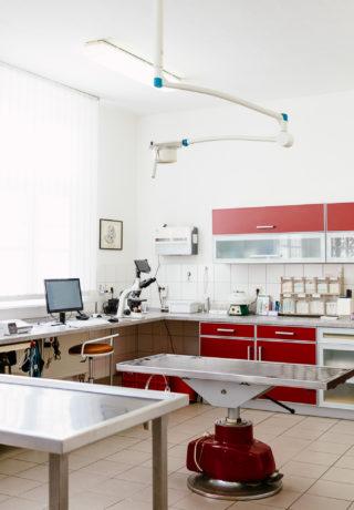 Technische Ausstattung Tierarztpraxis Dr. Andres Pohl